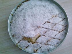 Creamy dreamy cocos cake