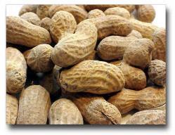 Pinda-kokos koekjes